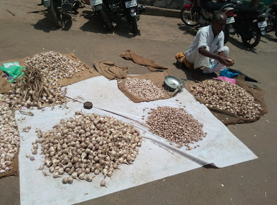 Man selling Garlic