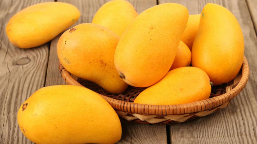 The summer fruit