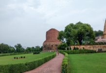 One day trip to Sarnath with Bananivista