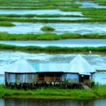 northeast india, tourist hotspots,bananivista