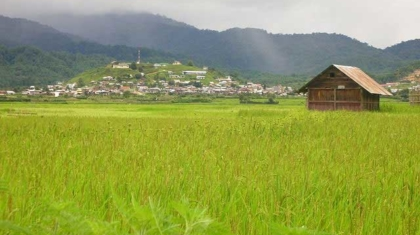 Ziro Valley in Arunachal Pradesh, Bananivista