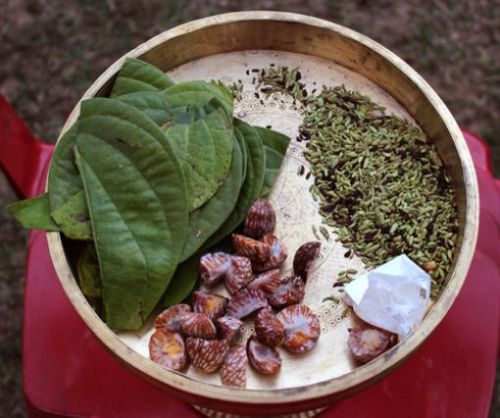 A favourite pastime in Assam is chewing Tamul-Pan image courtesy: www.holidayiq.com