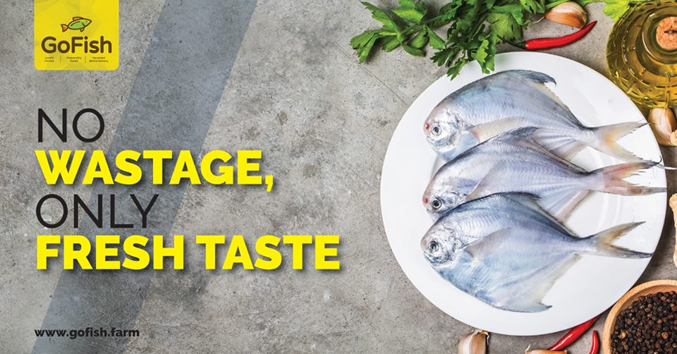 Locally farmed sea food.