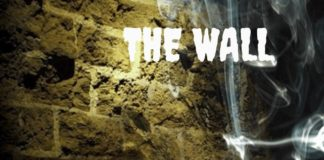 the wall, book review, BananiVista