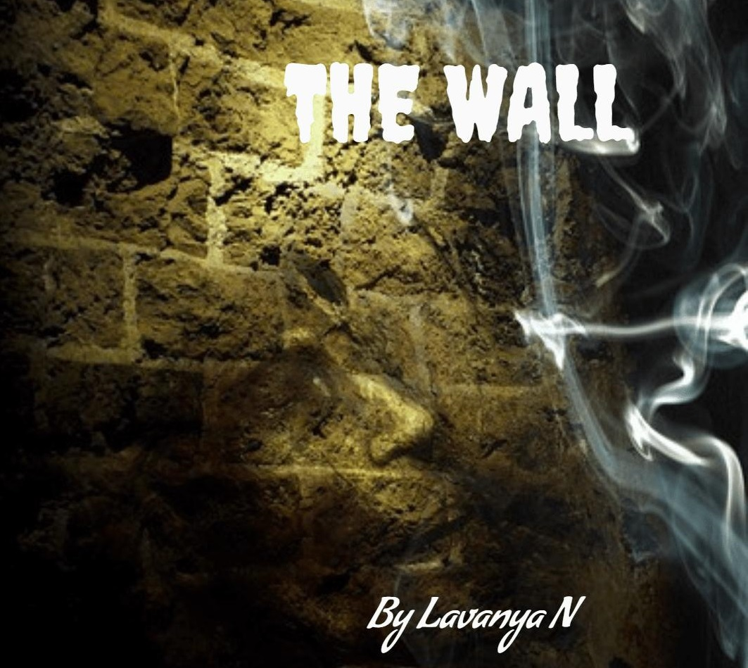 the wall, wall, book review, BananiVista