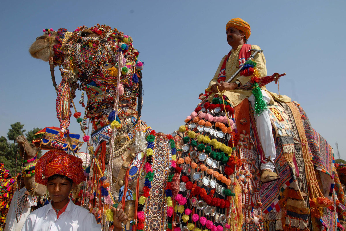 Decorate the camel at Bikaner Camel Festival