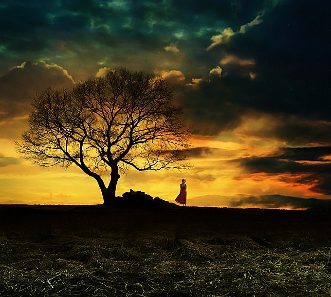 solitude, solitary confinement, livingandexploring, bananivista