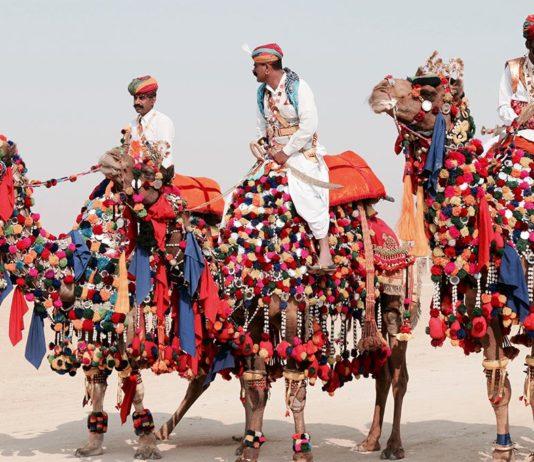 Bikaner Camel Festival, BananiVista