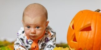 Pumpkin BananiVista