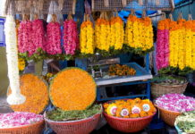 Shopping markets of Kerala, BananiVista