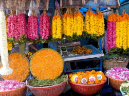 Shopping markets of Kerala, BananiVista