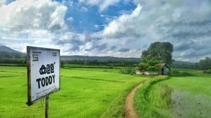 Kerala drinking problem, BananiVista