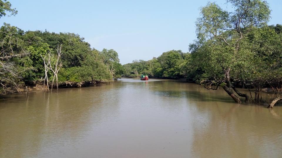 BananiVista, Odisha