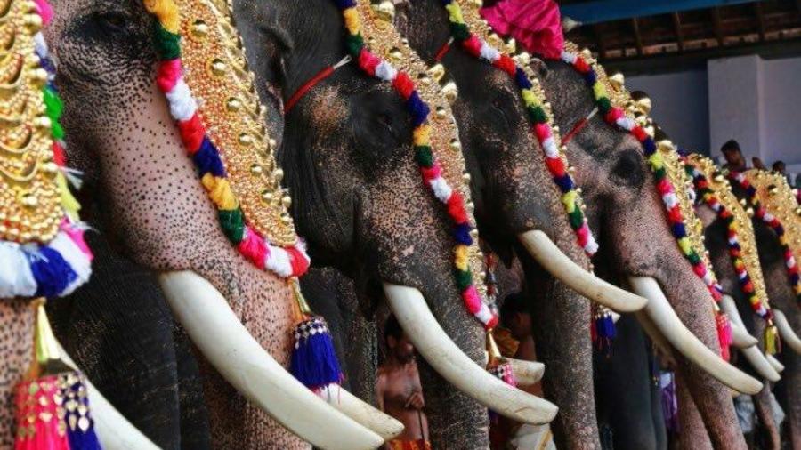 temple festivals